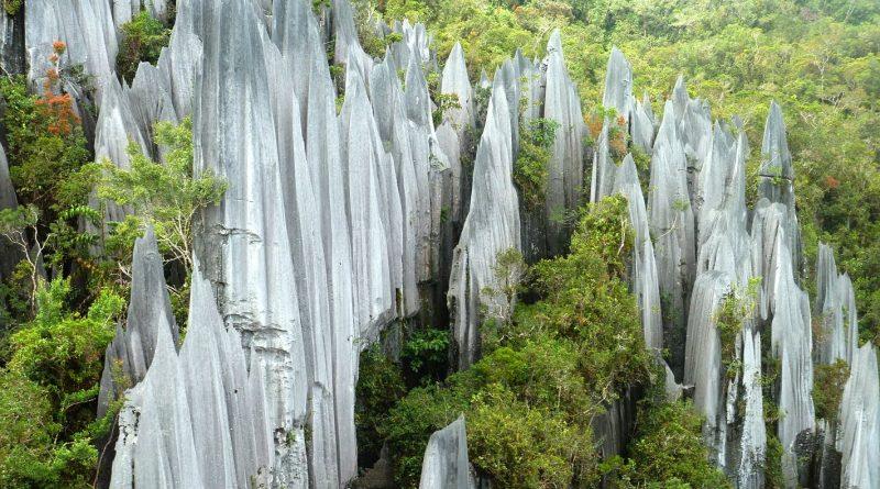 gunung Mulu Malaysia