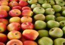 Manfaat Apel untuk Cerahkan Wajah dan bikin Langsing